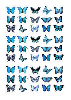 Cakeshop 45 x Essbare Blau Schmetterling Kuchen topper (Tortenaufleger)