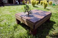 Miyagi Pallet Table with incorporated tree