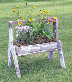 Rustic chipped wooden flower container...love this.