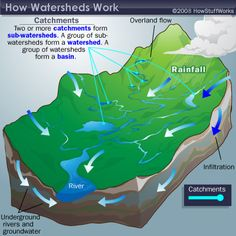 How Watersheds Work Watershed Management, Water Management, Earth Science, Data Visualization, Geography, Conservation, Environment, Teaching