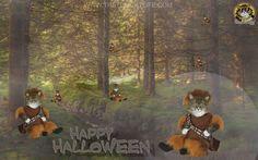 """Boone Cat"" in Happy Halloween from www.TheTomCatLife.com"