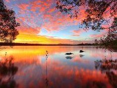 Lake Doonella, Noosa Heads, Queensland, Australia