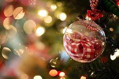 Magiczny ślub w Boże Narodzenie - Idealny czas na ślub? Z pewnością są to Święta Bożego Narodzenia! Wyjątkowy czas, magiczny, dni, kiedy cała rodzina spotyka się, świętuje. Nie da się zaprzeczyć, że święta to jeden z najlepszych momentów na ślub. Ponadto wszystko na zewnątrz obsypane białym, świecącym się puchem. Przepiękna i wyj... - http://www.letswedding.pl/magiczny-slub-boze-narodzenie/