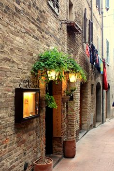 San Gimignano - not a maybe, I will DEFINITELY go back here but next time stay at least one night