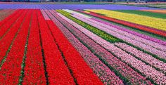 10 Of The Most Colorful Places In The World