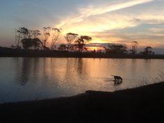 El arroyo de La Barra Punta del este