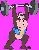 Gif małpa podnosząca ciężary Małpy Zwierzęta
