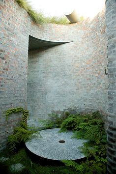 Gorgeous urban nature garden / repinned on www.tobydesigns.com