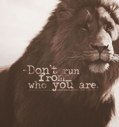 The Chronicles of Narnia-You doubt your value, don't run from who you are