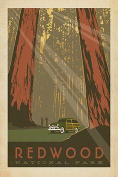 vintage redwood poster