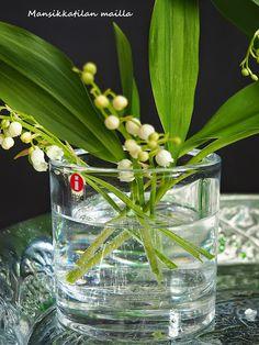 Mansikkatilan mailla: Inspis iskee