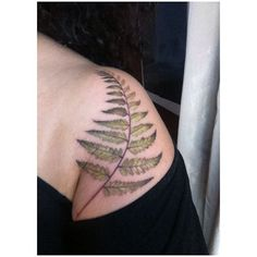 Delicate fern tattoo by Amanda Wachob. Green and brown. Site no longer exists