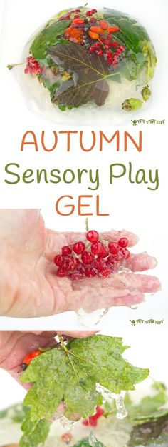 Fall Sensory Play Gel Autumn Sensory Play Gel is an irresistible hands-on play idea bringing the wonders of Nature into a squishy, squashy textural delight kids LOVE to explore. Sensory play at its best! Nursery Activities, Sensory Activities, Sensory Play, Infant Activities, Childcare Activities, Multi Sensory, Classroom Activities, Classroom Ideas, Montessori Baby