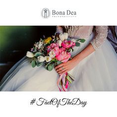 Award Winning Bona Dea Private Estate is the perfect wedding and function venue. Make your dream wedding unforgettable. Perfect Wedding, Dream Wedding, Blank Canvas, Old World Charm, Vows, Birthday Parties, Wedding Venues, Indoor, Romantic