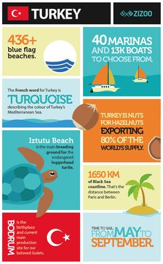 Infographic overview of the top reasons to go sailing in Turkey this summer including information on beaches, marinas and sea-life. Sailing Magazine, Best Yachts, Loggerhead Turtle, Marina Blue, Sailing Holidays, French Words, Turkey Travel, Mediterranean Sea, Black Sea