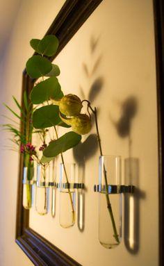 #plantjes #takjes-in-reageerbuisje in houten frame aan de muur #groendecoratie #interieur