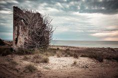 #long_exposure #seascape #landscape #tree #kaiaphas #καιαφας #παραλια_καιαφα #nikon_d750 #sand