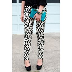dalmatian The Fancy Pants Report found on Polyvore
