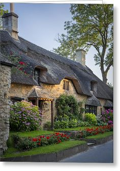 Thatched Roof - Cotswolds Greeting Card by Brian Jannsen