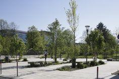 http://www.quartier-atlantis.fr/les-programmes/les-espaces-publics/le-parc-ampere/