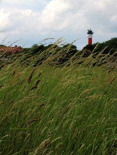 Germania del Nord - Il Faro di #Wangerooge - una pic di Picciola