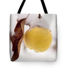 #AnnaMatveeva #FineArtPhotography #Photography #ArtForHome #Favorite #Bag #Tote Bag #Nature #Apple #Winter