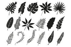 Palm leaf silhouette monstera frond plant leaves vector image on VectorStock Flower Tattoos, Leaf Tattoos, Leaf Silhouette, Silhouette Drawings, Silhouette Vector, Leaves Sketch, Leaf Stencil, Plant Tattoo, Leaf Illustration