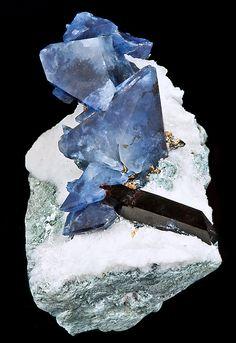 Benitoite crystals with Neptunite on Natrolite covered matrix - Dallas Gem Mine, California
