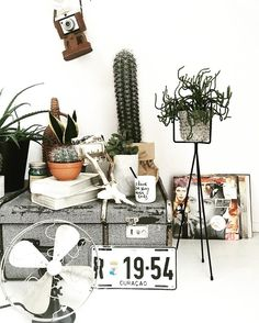 Urban Jungle Bloggers sur Instagram : Planty of work ahead of us, but chin up: it's mid week!  :@lookpimpyouroom #urbanjunglebloggers