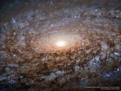 APOD: 2015 November 30 - In the Center of Spiral Galaxy NGC 3521