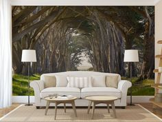 Road through a tree tunnel MURAL self adhesive by ZestPhotography