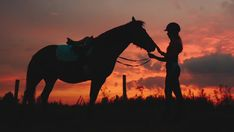 lovaglás – Google Kereső Girl Silhouette, Girl Pictures, Horses, Animals, Google Search, Animales, Animaux, Girl Photography, Animal