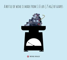 1.65 lbs of grapes makes a bottle of wine! http://winefolly.com/update/8-details-about-wine-that-will-cultivate-you/