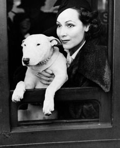 Dolores Del Rio with English Bull Terrier