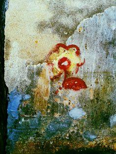 a  arte  o tempo  o muro a flor se fez