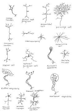 neurone tattoo - Google Search
