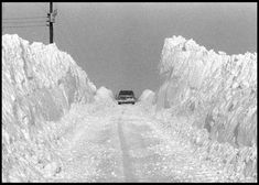 """Thursday marks 40 years since the """"Great Blizzard of The winter storm hit the Ohio Valley and Great Lakes Jan. Weather Blog, Ohio Weather, Weather Memes, Wild Weather, Paducah Kentucky, Snow Blizzard, Rhode Island History, I Love Winter, Winter Time"""