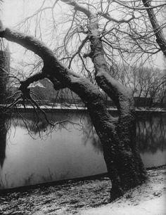 Josef Sudek : Winter Shotters Island, Prague, 40's