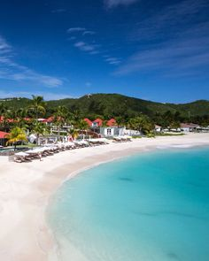 A Local's Guide to St. Barth's