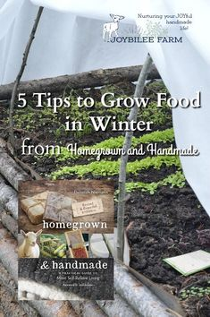 it's time to plan your winter garden.  But don't think of winter gardening as more work for smaller yields.  On the contrary, your winter garden can be your most productive garden if you understand the principles behind growing food in winter. #Sponsored, #Homegrown @NewSocietyPublishers