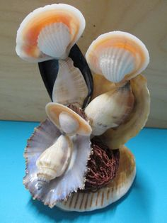 Arts And Crafts Store Product Seashell Ornaments, Seashell Art, Seashell Crafts, Beach Christmas, Christmas Deco, Christmas Projects, Sea Crafts, Nature Crafts, Shell Animals