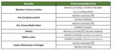 Tabela de Exames e Posicionamentos Radiográficos para Pequenos Animais - Provet Veterinary Medicine, Tables, Dog Cat, Animales, Tips