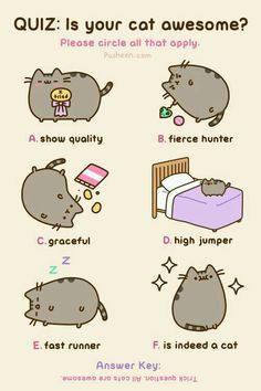 Pusheen the Cat is always awesome! Kawaii so cute, too! Chat Pusheen, Pusheen Love, Fat Cats, Cats And Kittens, Crazy Cat Lady, Crazy Cats, I Love Cats, Cool Cats, Funny Animals