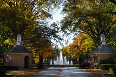 Front gate, Furman University. Saw this view driving in and told my mom I wanted to go to school here.
