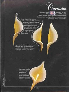 How to flowers Acrylic Painting Techniques, Painting Lessons, Painting Tips, One Stroke Painting, Tole Painting, Donna Dewberry Painting, Calla Lily, Calla Lillies, Learn To Paint