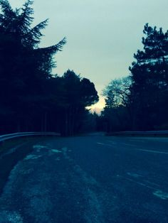 """@Giovanni Sedda: """"Il runner sa che la luce tra gli alberi del monte porta il segreto dell'impermanenza serena #scattidicorsa"""""""