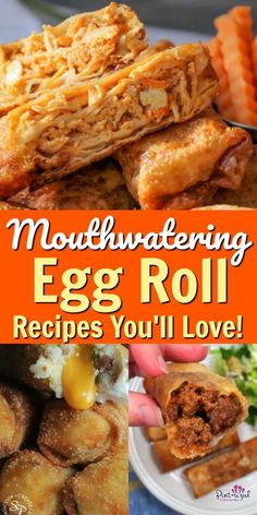 These simple and tasty egg roll recipes are sure to please your taste buds and your families! These ahh-mazing food combinations are creative and oh so good! The list goes on and on so try one of these amazing recipes today! Egg Roll Recipes, Chef Recipes, Asian Recipes, Cooker Recipes, Copycat Recipes, Potato Recipes, Crockpot Recipes, Easy Recipes, Soup Recipes