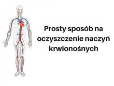 oczyszczenie naczyń krwionośnych Detox, Memes, Health, Rome, Health Care, Meme, Salud