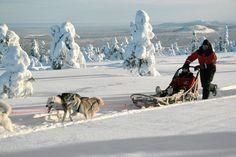 Genieten van unieke winteractiviteiten die mogelijk zijn in het ongerepte sneeuwlandschap van Lapland. Alles komt aan bod in deze avonturenweek: een sneeuwscootertocht, huskysafari, sneeuwschoenwandelen, heerlijk ontspannen in een verkwikkende sauna en voor wie wil: ijswakzwemmen... Bij deze reis zijn de heen- en terugvlucht inbegrepen en kun je de hele week gratis thermokleding gebruiken. Het vervoer van je skimateriaal kan gratis mee aan boord en je kunt gratis parkeren op Schiphol.