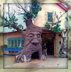 Magical Tree, Busch Gardens Williamsburg, Virginia